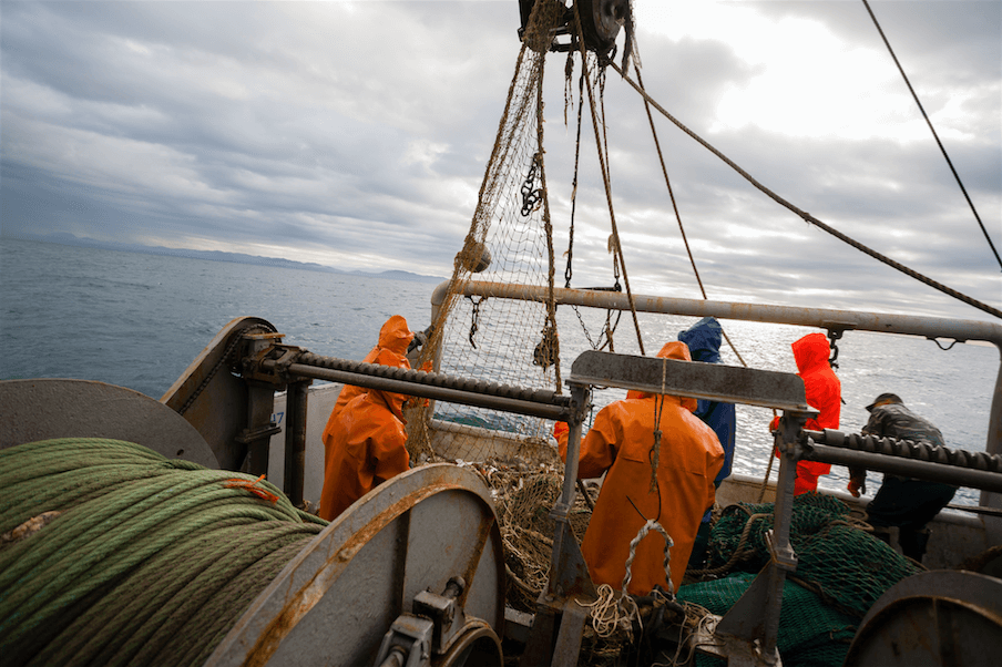 Scallop Wars arising from the Common Fisheries Policy